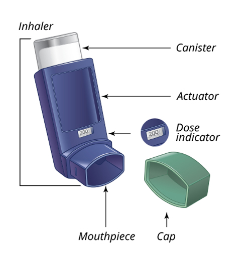 Albuterol sulfate inhaler from LUPIN